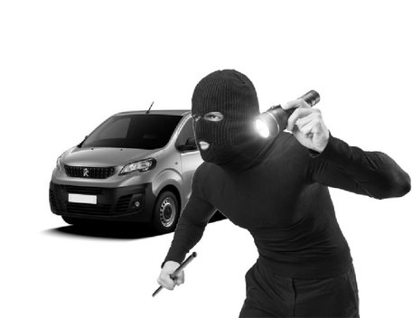 Carbolt 103 Laadruimtebeveiliging Peugeot Expert 2016-H